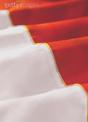Polish Flag photo