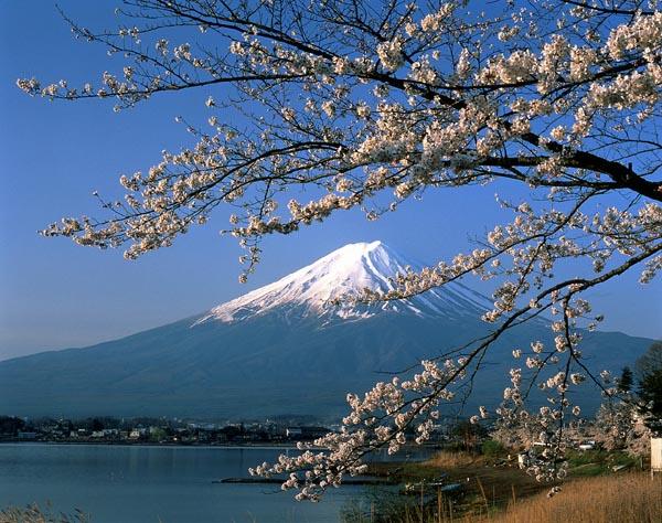 [Food styling] bài [Và ta đã đến núi Phú Sĩ] thuộc mục [travel]