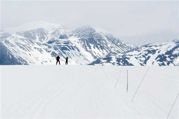 Cross-country skiing, Oppland, Norway photo. Cross-country skiing, Oppland
